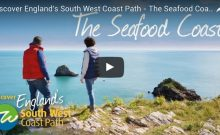 Discover England's South West Coast Path – The Seafood Coast